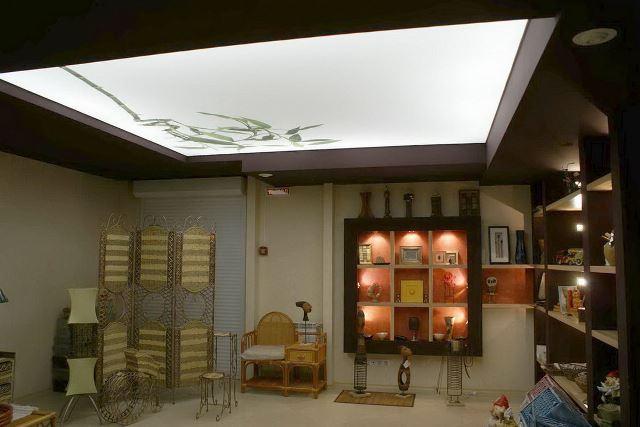 Декор потолкаполотна из светопропускающей пленки