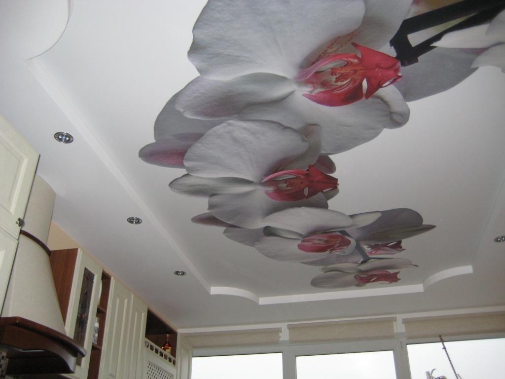 Дизайн натяжных потолков в залах с картинкой