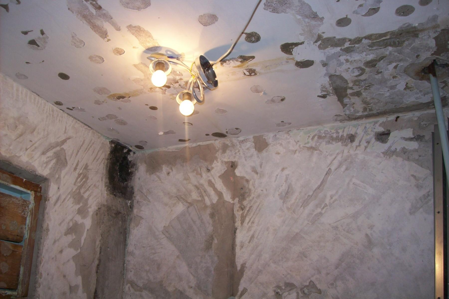 сырость под натяжным потолком стоит опасаться