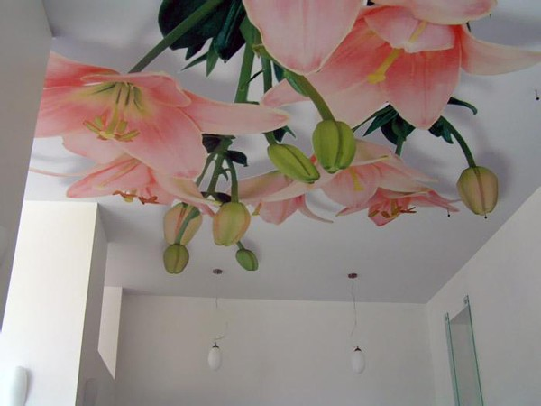 Фотообоииз текстиля на потолок